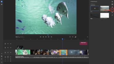 Photo of [Premiere Rush] 速度パネルを使って60fpsなどのクリップをスローモーションにしてみよう!